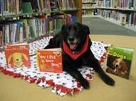 Black dog at library