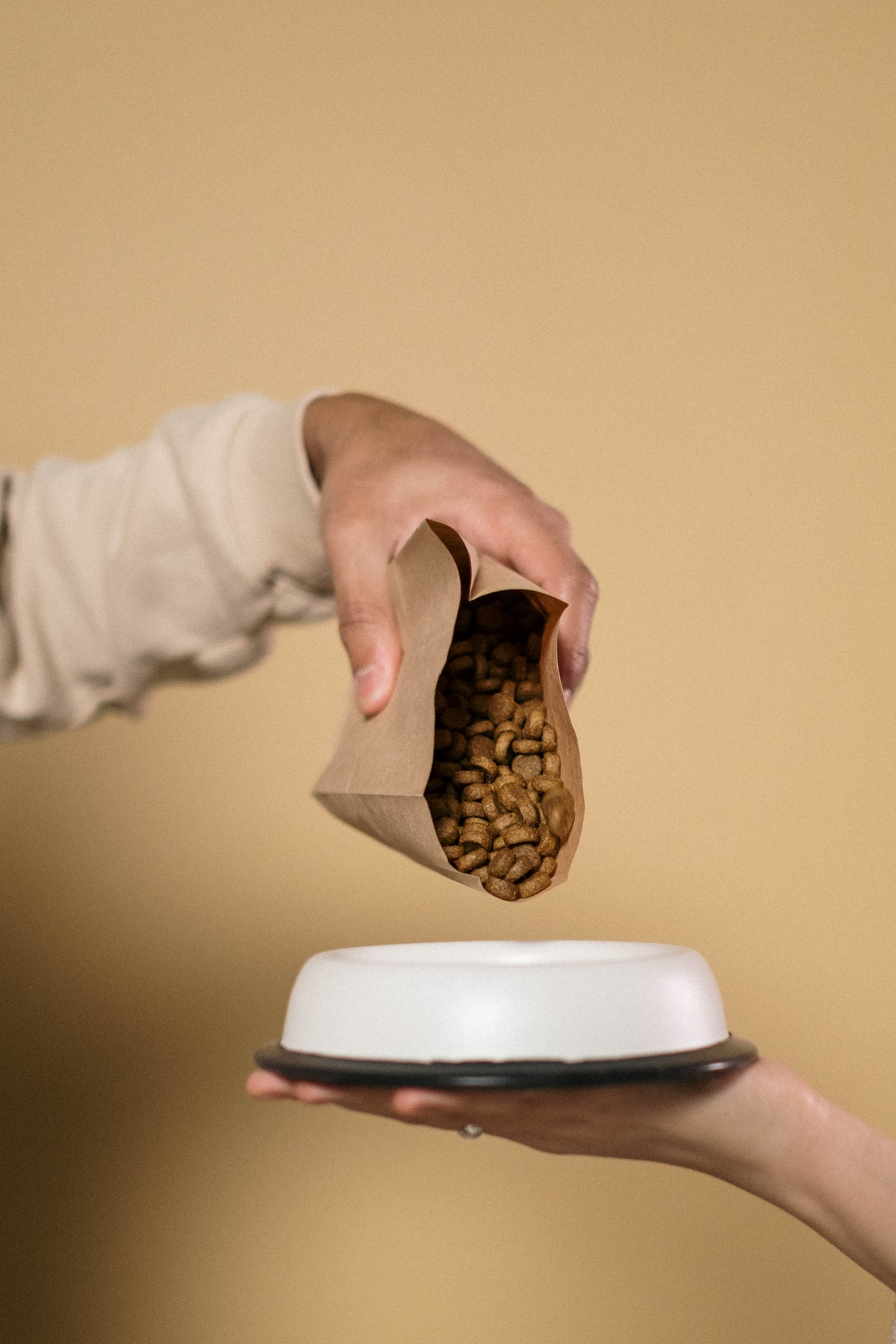 Pouring dog food into a bowl
