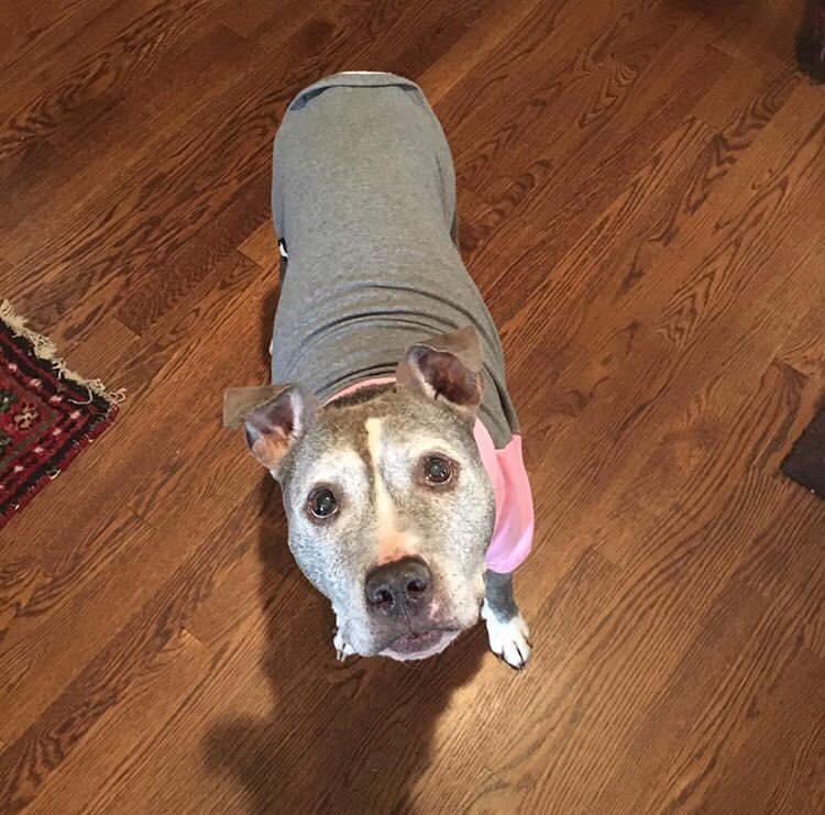 Faye wearing a sweater