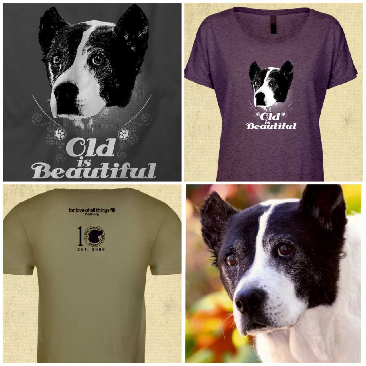 """Four pictures. In top left, black and white picture of dog with """"Old is Beautiful"""" text. Top right, Purple tee with dog from top left. Bottom left, """"for the love of all things, float.org"""" and grey muzzle 10 year logo t shirt. Bottom rt, pic of b&w dog"""