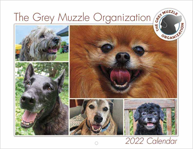 Grey Muzzle 2022 Calender