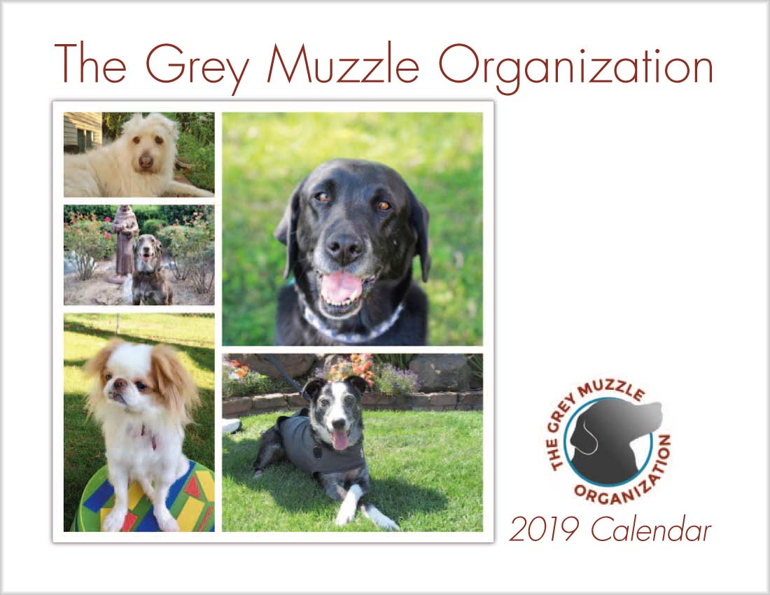 Calendar cover with 5 dogs pictured in various poses.