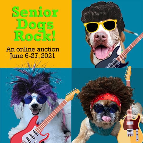 Senior Dogs Rock! graphic