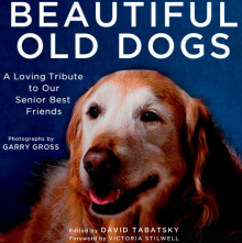 Beautiful Old Dogs, a loving tribute to our senior best friends, photography by Garry Gross