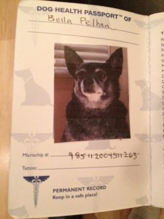 Bella's passport for her trip to the UK.