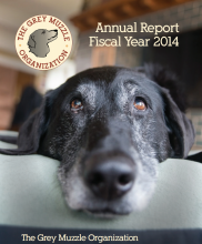 Cover of 2014 Annual Fiscal Year Report
